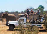 Ecovolontariat en Afrique du Sud