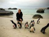 Soins animaliers en Afrique du Sud