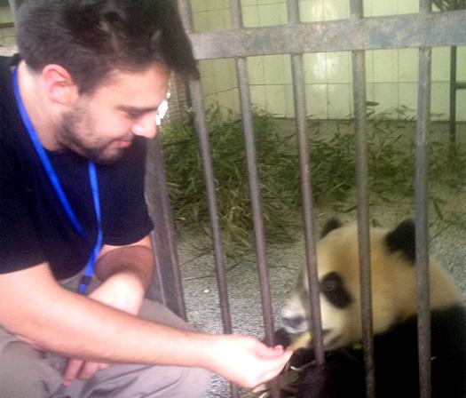 Nouveau témoignage protection des pandas en Chine