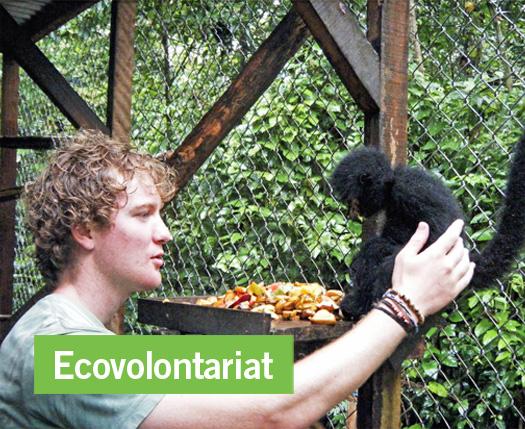 Mise en place d'une charte éthique de l'écovolontariat