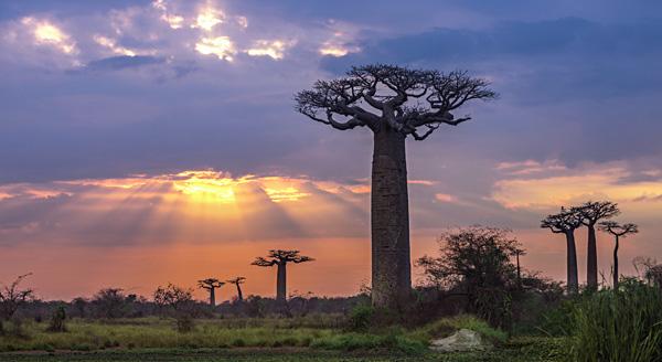 A la une: nouveau pays d'action MADAGASCAR