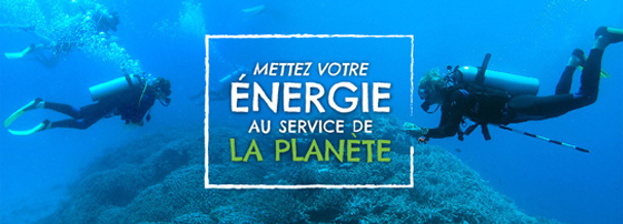 Missions écovolontariat