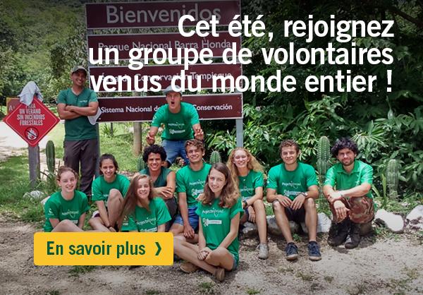 Missions de volontariat et stage à l'étranger